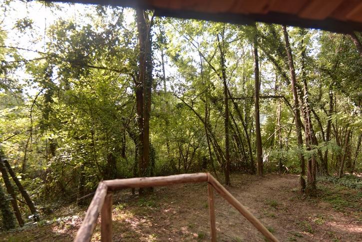 Robinson Crusoe, la palafitta nel bosco